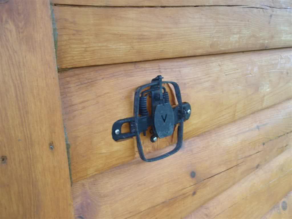 The 20 Most Ridiculous Redneck Doorbells 11